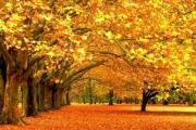 Осенью на отдых? Прекрасный выбор!