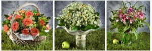 Композиции цветов