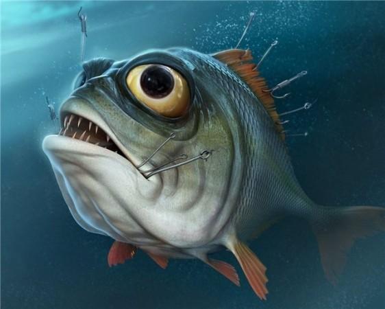Ловля рыбы – популярное хобби многих людей