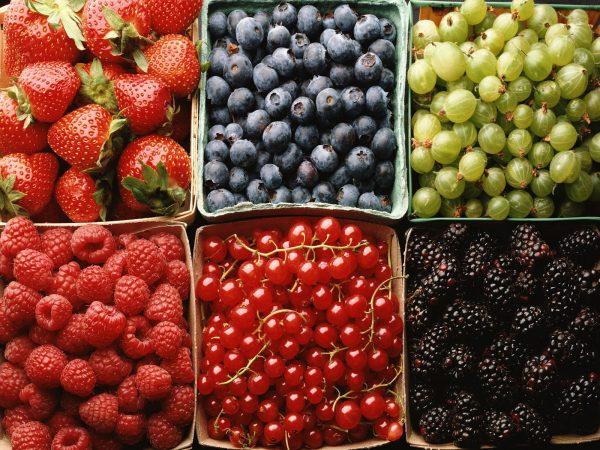 ягоды для малышей