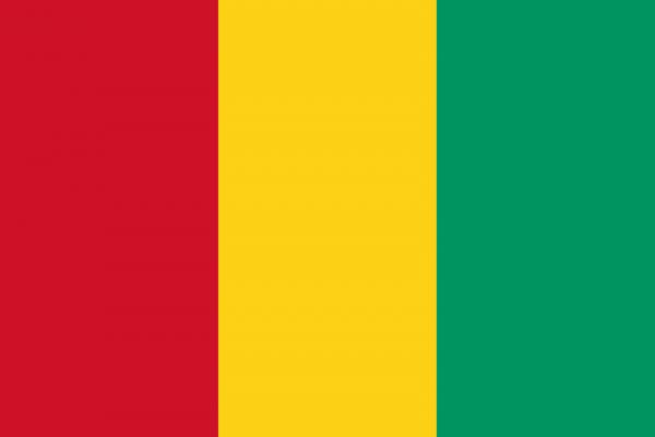 Виза в Гвинею