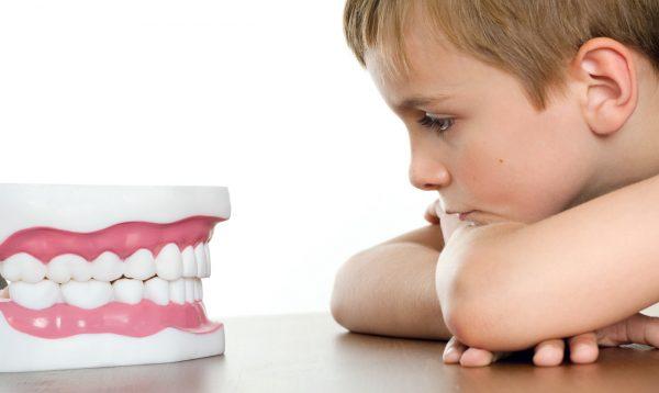 Развитие зубочелюстной системы: правильный и неправильный прикус