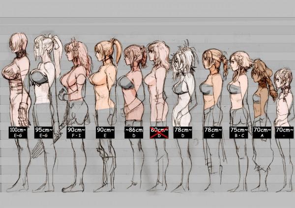 Размер груди: виды