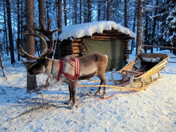Отдых в Финляндии - жемчужине Скандинавии