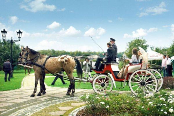 Свадьба в Польше - что может быть лучше проведения свадьбы в одном из самых красивых мест на земле?