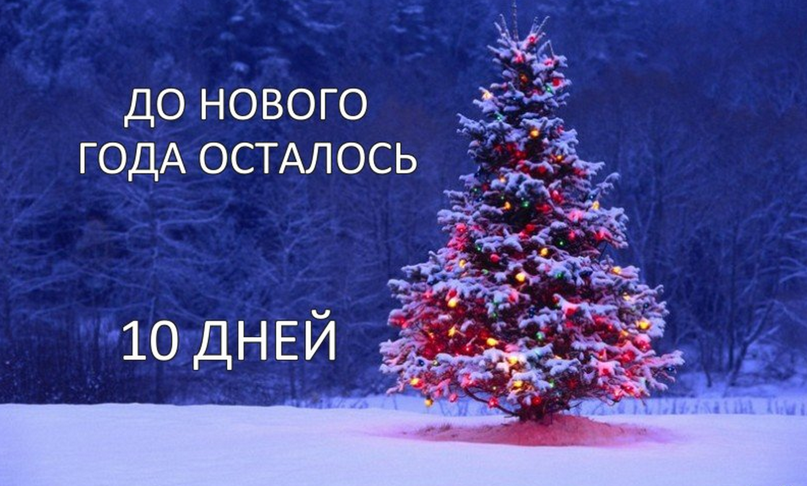 8 дней до нового года открытка