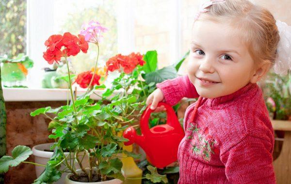 Сад и ребенок: все за и против