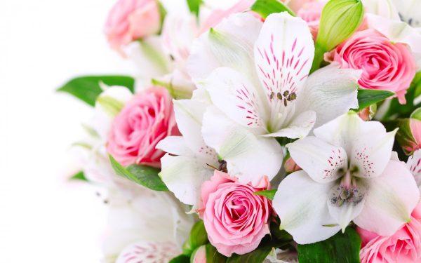 cvety-k-8-marta