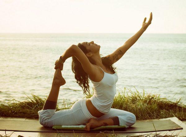 vidy-yogi
