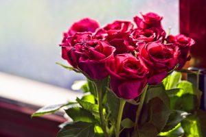 Дарение цветов как символ праздника весны: кому и как женщины дарят букеты