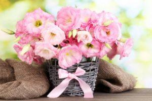 Цветы – безошибочные подарки